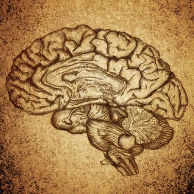 Neurociencia_blog
